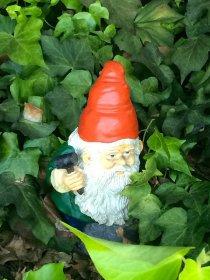 Krasnal w ogrodzie